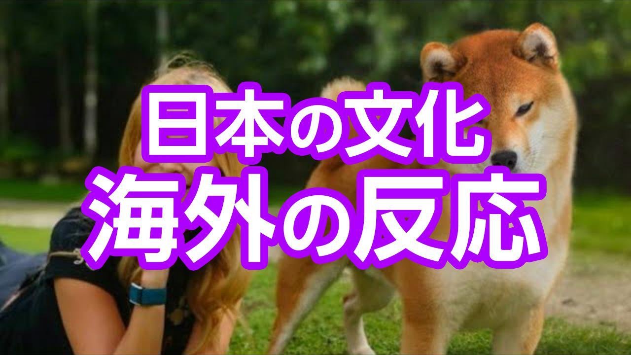 芝犬海外の反応